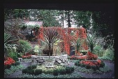 view [Moot Pointe]: west view of fine garden and virginia creeper on arbor. digital asset: [Moot Pointe]: west view of fine garden and virginia creeper on arbor.: 1997 Oct.