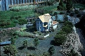 view [Hieronimus Garden]: train garden house, showing planting development. digital asset: [Hieronimus Garden]: train garden house, showing planting development.: 1995 Jun.
