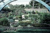 view [Hieronimus Garden]: train garden, looking west through arbor. digital asset: [Hieronimus Garden]: train garden, looking west through arbor.: 1996 Sep.