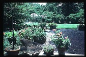 view [Boxly]: patio with planters. digital asset: [Boxly]: patio with planters.: 1979 Jun.