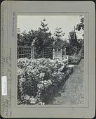 view Unidentified Garden in Philadelphia, Penn. digital asset: Unidentified Garden in Philadelphia, Penn. [photoprint]