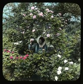 view [Breeze Hill]: woman in garden with roses. digital asset: [Breeze Hill] [lantern slide]: woman in garden with roses.
