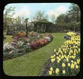 view [Breeze Hill]: garden pathway; trellis; flowerbeds; tulip; azalea digital asset: [Breeze Hill] [lantern slide]: garden pathway; trellis; flowerbeds; tulip; azalea