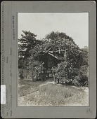 view [Breeze Hill]: Wooden rose arbor with bench. digital asset: [Breeze Hill] [photographic print]: Wooden rose arbor with bench.