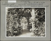 view [Breeze Hill]: Roses (Bess Lovett on right,Zephirine Drouchin on left) climbing an arbor with wooden bench and table. digital asset: [Breeze Hill] [photographic print]: Roses (Bess Lovett on right,Zephirine Drouchin on left) climbing an arbor with wooden bench and table.