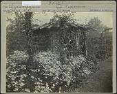 view [Breeze Hill]: Wooden gazebo next to flower bed of Chrysanthemums. digital asset: [Breeze Hill] [photographic print]: Wooden gazebo next to flower bed of Chrysanthemums.