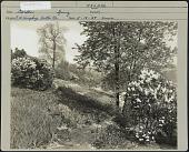 view Humphrey Garden digital asset: Humphrey Garden [photoprint]