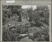 view Thompson Garden digital asset: Thompson Garden [photoprint]