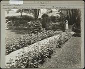 view Mateer Garden digital asset: Mateer Garden [photoprint]