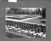 view Widener Garden digital asset: Widener Garden [photoprint]