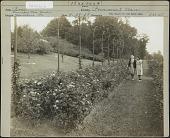 view Harrisburg Municipal Rose Garden digital asset: Harrisburg Municipal Rose Garden [photoprint]