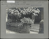 view [Miscellaneous Sites in Harrisburg, Pennsylvania]: entrance garden near the intersection of North Second and Hamilton Streets. digital asset: [Miscellaneous Sites in Harrisburg, Pennsylvania] [photographic print]: entrance garden near the intersection of North Second and Hamilton Streets.