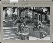 view [Miscellaneous Sites in Harrisburg, Pennsylvania]: Window boxes in front of unidentified beauty parlor along Derry Street. digital asset: [Miscellaneous Sites in Harrisburg, Pennsylvania] [photoprint]: Window boxes in front of unidentified beauty parlor along Derry Street.