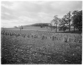 view [Miscellaneous Sites in Reading, Pennsylvania]: farmland beyond the city limits of Reading. digital asset: [Miscellaneous Sites in Reading, Pennsylvania] [glass negative]: farmland beyond the city limits of Reading.