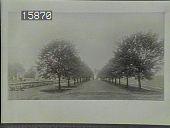 view [Whitemarsh Hall] digital asset: [Whitemarsh Hall] [slide]