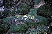 view [Hidden Glen Farms]: detail of garden center planting with sundial and bulbs (northeast). digital asset: [Hidden Glen Farms]: detail of garden center planting with sundial and bulbs (northeast).: 1998 Apr.