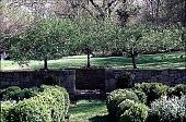 view [Hidden Glen Farms]: detail view of arbor seating area (northwest). digital asset: [Hidden Glen Farms]: detail view of arbor seating area (northwest).: 1998 Apr.
