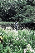 "view [Hidden Glen Farms]: detail of colonial ""Shepherd."" digital asset: [Hidden Glen Farms]: detail of colonial ""Shepherd."": 1998 Jul."