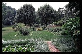 view [Hidden Glen]: view of garden (southwest). digital asset: [Hidden Glen]: view of garden (southwest).: 1998 Jul.