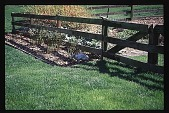 view [Hidden Glen]: detail of vegetable garden gate and border plantings. digital asset: [Hidden Glen]: detail of vegetable garden gate and border plantings.: 1998 Apr.