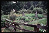 view [Hidden Glen]: view of vegetable garden. digital asset: [Hidden Glen]: view of vegetable garden.: 1998 Jul.
