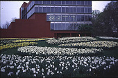 view [Daffodil Hill in The American College Arboretum]: Goodwin Daffodil Hill, view looking up to MDRT Foundation Hall. digital asset: [Daffodil Hill in The American College Arboretum]: Goodwin Daffodil Hill, view looking up to MDRT Foundation Hall.: 2001 Apr.