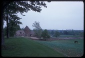 view [McLean Garden in unidentified city in Pennsylvania]: view of barn; horses in the countryside. digital asset: [McLean Garden in unidentified city in Pennsylvania]: view of barn; horses in the countryside.: 1963 May.