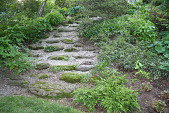 view [St. Andrews]: the steps are Wissahickon Schist collected on the property. digital asset: [St. Andrews]: the steps are Wissahickon Schist collected on the property.: 2009 May.