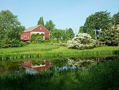 view [Tunnel Farm]: view of the barn and meadow from across the pond in spring. Pathes are kept mown through the meadow; a bench is placed to enjoy the view. digital asset: [Tunnel Farm]: view of the barn and meadow from across the pond in spring. Pathes are kept mown through the meadow; a bench is placed to enjoy the view.: 2011.