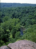 view [Tohickon Hill]: a view of one of the ravines on the property. digital asset: [Tohickon Hill] [transparency]: a view of one of the ravines on the property.
