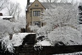 view [Cherrytree House]: The trees and shrubs in the front yard covered in snow. digital asset: [Cherrytree House]: The trees and shrubs in the front yard covered in snow.: 2010 Feb.