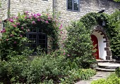 view [Cherrytree House]: Arches are repeated by the climbing rose and ivy while the front stoop is a millstone inset with an art pottery tile. digital asset: [Cherrytree House]: Arches are repeated by the climbing rose and ivy while the front stoop is a millstone inset with an art pottery tile.: 2013 Jun.