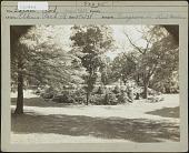 view [Unidentified Garden in Elkins Park, Pennsylvania] digital asset: [Unidentified Garden in Elkins Park, Pennsylvania] [photoprint]