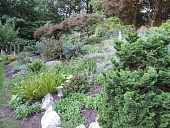 view [MacGregor Gardens]: the rocks were placded in this hillside garden to provide a foot hold for the gardener. digital asset: [MacGregor Gardens]: the rocks were placded in this hillside garden to provide a foot hold for the gardener.: 2016 Sep.