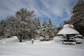 view [Wildacre]: the garden under winter snow seen from the bocce court. digital asset: [Wildacre]: the garden under winter snow seen from the bocce court.: 2015 Mar.