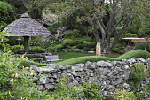 view [Wildacre]: the Japanese garden's parasol-shaped shelter and the wave-shaped privet hedge. digital asset: [Wildacre]: the Japanese garden's parasol-shaped shelter and the wave-shaped privet hedge.: 2012 Jun.