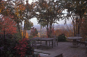 """view [Hipp Garden]: fall view across deck highlighted by colorful accents in shrubs and """"Natchez"""" crape myrtles. digital asset: [Hipp Garden]: fall view across deck highlighted by colorful accents in shrubs and """"Natchez"""" crape myrtles.: 2006 Oct."""