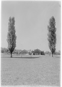 view [Miscellaneous Sites in Switzerland]: poplars and farm buildings in an unidentified location. digital asset: [Miscellaneous Sites in Switzerland] [glass negative]: poplars and farm buildings in an unidentified location.