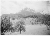 view [Miscellaneous Sites in Switzerland]: Spiez, with the Niesen, the mountain in the background. digital asset: [Miscellaneous Sites in Switzerland] [glass negative] Spiez, with the Niesen, the mountain in the background.
