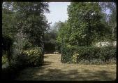 view Black Garden: green garden. digital asset: Black Garden [slide]: green garden.