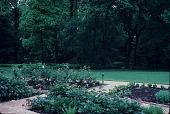 view [Michael McDonnell Garden]: garden overlooking lawn. digital asset: [Michael McDonnell Garden]: garden overlooking lawn.: 1987 May.