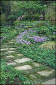 view [Bickie McDonnell Garden]: a stepping stone path leads to the upper woodland garden. digital asset: [Bickie McDonnell Garden]: a stepping stone path leads to the upper woodland garden.: 2009 Apr.