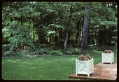 view [Lee Garden]: the back porch looks out past a pair of versailles planters toward a naturalized woodland area. digital asset: [Lee Garden]: the back porch looks out past a pair of versailles planters toward a naturalized woodland area.: [ca. 1987]