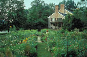 view [Wildwood]: midsummer view of house and annual garden. digital asset: [Wildwood]: midsummer view of house and annual garden.: 1999 Jul.