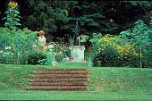 view [Wildwood]: steps to annual garden. digital asset: [Wildwood]: steps to annual garden.: 1999 Jul.