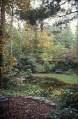view [Rest and Be Thankful Garden]: a sitting area by a pond, showing a wide range of plant material. digital asset: [Rest and Be Thankful Garden]: a sitting area by a pond, showing a wide range of plant material.: 2006 Oct.