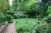 view [Wellford Garden]: clematis grows on a trellis in the triangular iris bed. digital asset: [Wellford Garden]: clematis grows on a trellis in the triangular iris bed.: 2010 Apr.