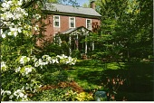 view [The Craighead House and Garden]: looking toward the house from the frontyard shade garden. digital asset: [The Craighead House and Garden]: looking toward the house from the frontyard shade garden.: 2013 Apr.