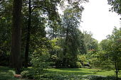 view [Siler Garden]: the front yard garden was designed like a park. digital asset: [Siler Garden]: the front yard garden was designed like a park.: 2014 Jul.