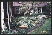 view [Coke Garden]: rock garden. digital asset: [Coke Garden]: rock garden.: 1996 Jul. 15.